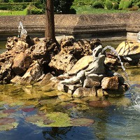 fontaine tortues2 200x200