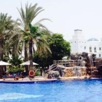piscine rocher palmier 200x200