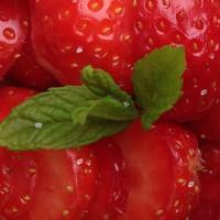 easy compta fraises menthe 200x200